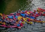 Live Love Paddle – Austin Kayak Rentals & Tours