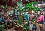 Guero's Taco Bar - Austin, TX 03