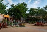 Cosmic Coffee + Beer Garden