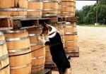 Garrison Brothers Distillery - Hye TX